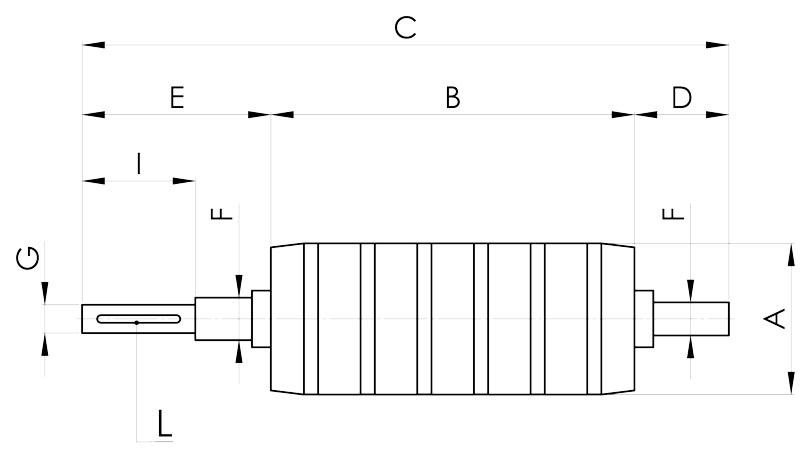 separazione magnetica disegno rullo composto